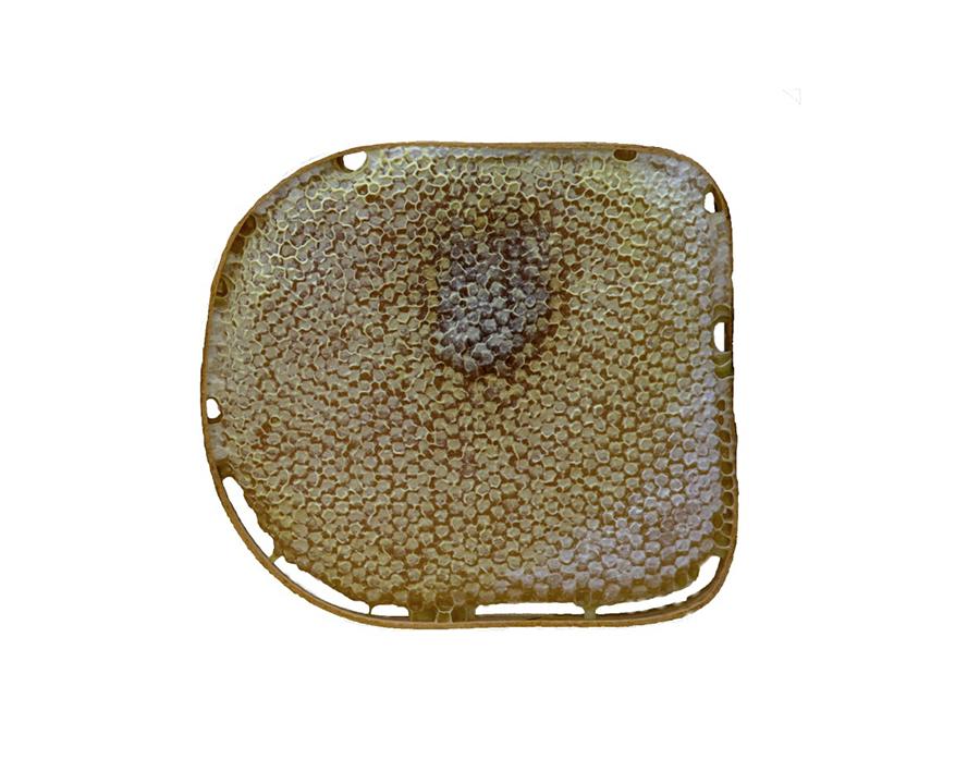 Karakovan Balı (1,5 Kg)